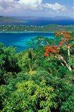 Magens Bay, St Thomas, Caribbean