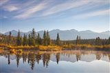 Canada, Alberta, Jasper National Park Scenic of Cottonwood Slough - your walls, your style!