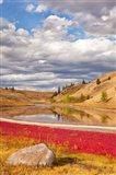 Grassland landscape, Lac Du Bois Grasslands Park, Kamloops, BC, Canada