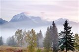Canada, British Columbia, Mount Robson Park Sunrise on mountain - your walls, your style!