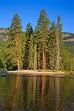 Kettle River Provincial Park, British Columbia