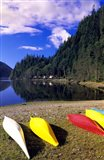 Canoeing, Clayoquot Wilderness, British Columbia