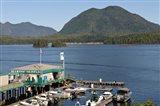 Harbor, Meares Island, Vancouver Island, British Columbia