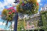 Flowers, Empress Hotel, Victoria, British Columbia
