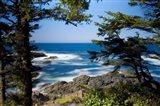 Wild Pacific Trail, Vancouver Island British Columbia