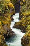River, Vancouver Island, British Columbia