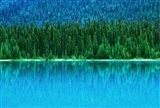 Emerald Lake Boathouse, Yoho National Park, British Columbia, Canada (horizontal)