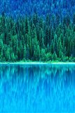 Emerald Lake Boathouse, Yoho National Park, British Columbia, Canada (vertical)