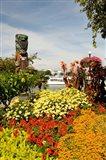Flower Garden, Victoria, BC
