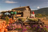 Log Barn and Fruit Stand in Autumn, British Columbia, Canada