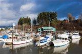 Port Alberni, Harbor Quay Marina, Vancouver Island, British Columbia, Canada