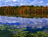 Park Haven Lake in Autumn