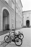 Bicycles in the Domplatz