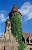 Ivy-Covered Medieval Tower