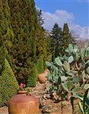 Botanical Garden in Balchik