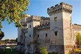 Tarascon Castle, Arles, Provence, France