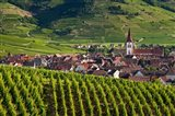 Ammerschwihr Vineyards, Alsace