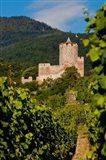 Kaysersberg Chateau