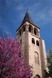 Trees below the Eglise Saint Germain Bell Tower