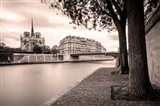 River Seine and Cathedral Notre Dame