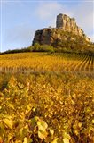 Roche de Solutre above Vineyards, France