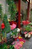 Florist in Ile St Louis, Paris, France