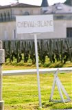 Vineyard and Chateau Cheval Blanc