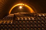 Champagne Bottles in Vaulted Cellar