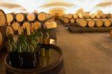 Barrel cellar, Cote d Or, Burgundy, France