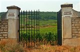 Iron Gate to the Vineyard Clos Pitois