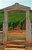 Stone Portico to the Vineyard Chevalier-Montrachet