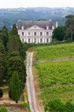 Chateau de la Coulee de Serrant, Loire Valley