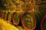 Kiralyudvar Winery Barrels with Tokaj Wine, Hungary