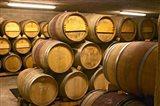 Wine cellar, Alain Voge, France