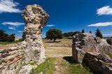 Greek and Roman Ruins, Aleria