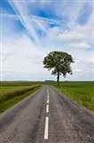 Road through the countryside, Beaumont, Somme, Picardy, France
