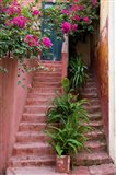 Colorful Stairways, Chania, Crete, Greece