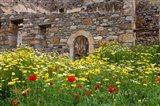 Old building and wildflowers, Island of Spinalonga, Crete, Greece