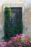 Detail of Old House, Assos, Kefalonia, Ionian Islands, Greece
