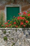 Vacation Villa Wall with Flowers, Matsoukata, Kefalonia, Ionian Islands, Greece