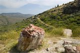 Petrified Forest, Sigri, Lesvos, Mithymna, Northeastern Aegean Islands, Greece