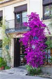 Spain, Granada The entrance of Hotel America