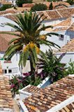 Spain, Andalusia, Zahara Rooftops in the Andalusian White Village