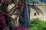 Plams, Flowers and Ramparts of Alcazaba, Malaga, Spain