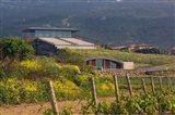 Bodegas Baigorri in Rioja Alavesa, Spain