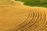 Tilled Ground Ready for Planting, Brinas, La Rioja, Spain