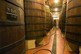 Large Oak tanks holding wine, Bodega Muga Winery, Haro village, La Rioja, Spain