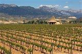 Small church next to the Wine Culture Museum, Briones village, La Rioja, Spain