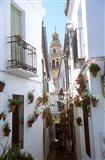 Calleja de las Flores (Flower Alley), Spain