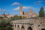 Puente Romano, Salamanca, Spain